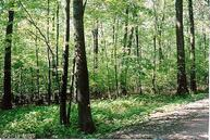 Bench Road Lot 58 Swanton MD, 21561