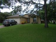 3805 Hillview Court Land O Lakes FL, 34639