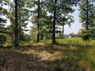 0 Sunset Pass, Lot 1 Big Sandy TN, 38221