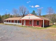 10884 Route 23 A Prattsville NY, 12468