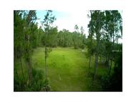1121 Orchid Drive Indian Lake Estates FL, 33855