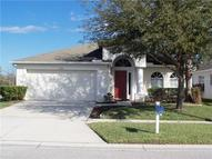 17233 Blooming Fields Drive Land O Lakes FL, 34638
