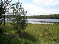 Mccollum Lk Road (11 Acres) Curran MI, 48728