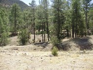 0 Forest Rd 112-Rock Canyon Ro Magdalena NM, 87825