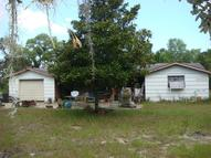 12613 Choctaw Trail Hudson FL, 34669