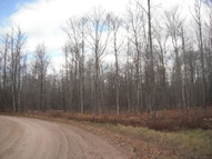 Lot 14 Hickory Road Pickerel WI, 54465