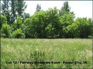 113 Fair Meadows Lane Forest City IA, 50436