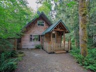 65750 E Sandy River Ln Rhododendron OR, 97049