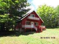 171 Long View Rd Downsville NY, 13755