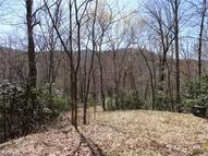 0 Chestnut Oak Lane Pisgah Forest NC, 28768