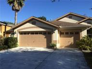 10215 Timberland Point Drive Tampa FL, 33647