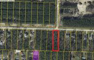 500 Skunk Valley Road Southport FL, 32409