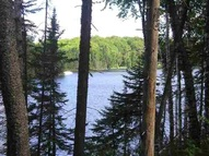 Lot 29 Secluded Point Michigamme MI, 49861