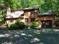 227 Ravenhill Rd Tamiment PA, 18371