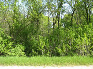 50 Acres Buettner Rd White Lake WI, 54491