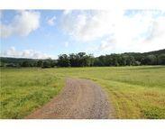 Holt Forge (20 Acres) Rd Altus AR, 72821