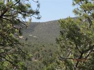0 Deer Canyon Trail Road Mountainair NM, 87036