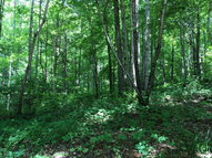 Lot 27 Ewell Drive Cookeville TN, 38501