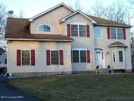106 Swartsboro Dr Tamiment PA, 18371