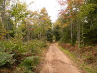 000 Pike Lake Trail Newberry MI, 49868
