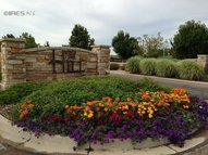 4224 Taliesin Way Fort Collins CO, 80524