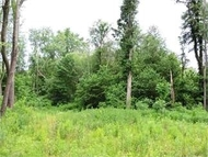 Lot #16 Patnaude 16 Lakeville IN, 46536