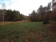 45 Ac. James Pruitt Rd. Burkesville KY, 42717