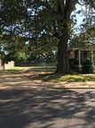 1806 Jackson Avenue Oxford MS, 38655