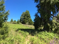 9 Acres Upper Meadow Palomar Mountain CA, 92060