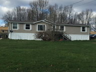 107 Upper Plantation Road Danese WV, 25831
