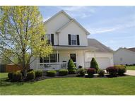 329 Greenview Ct Wellington OH, 44090