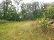 13.54 Ac Spence Lane Tract 10 Hilham TN, 38568