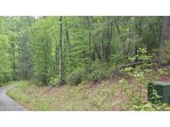 Lot 7 River Birch None Old Fort NC, 28762