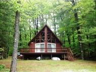 203 Lake Shore Drive Deering NH, 03244