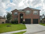 22519 Fosters Park Ct Porter TX, 77365