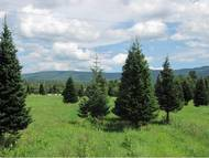 Lot #2 Lawrence Farm Road Morristown VT, 05661