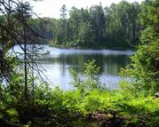 Lot 45a N Fence Lake Drive Lots 35 And 45a Michigamme MI, 49861