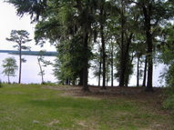 Lot 4 And 16 Millstone  S/D Fort Gaines GA, 39851