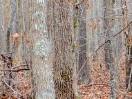 Private Hwy 63 Section 3 Mammoth Spring AR, 72554