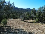 25 Emerald River Rd Reserve NM, 87830
