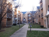 8700 West Evelyn Lane 305 Chicago IL, 60656