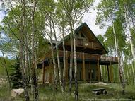 380 County Rd 26 Road Twin Lakes CO, 81251