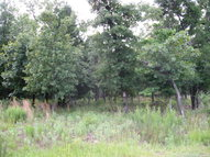 Lot 170 Zebra Crossing Larue TX, 75770