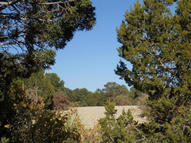 Lot 25 Roadrunner Ct Estancia NM, 87016