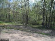 22342 County Road 1 Emily MN, 56447