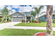 12102 Whistling Wind Drive Riverview FL, 33569