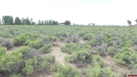 Tbd County Road 106 South Alamosa CO, 81101