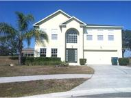 15504 Willet Court Mascotte FL, 34753