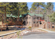 13438 Berry Hill Ln Pine CO, 80470