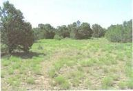 275 Federal Forest Ne Mountainair NM, 87036